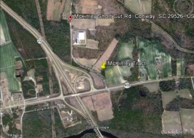 TBD McKinley Shortcut Road,Conway,South Carolina,29526,Land Development,McKinley Shortcut Road,1035